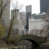 Центральный парк в Нью Йорке :: anna borisova