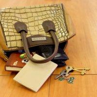 Дамская сумка :: Екатерина Василькова