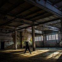 Психоделика :: Кенгуру Урбанистический