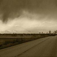 Приближение дождя :: Евгений Никифоров