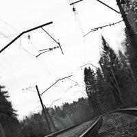 Дорога в никуда... :: мария