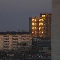 Золотой пожар заката :: Елена Попова