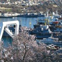 В порту весной :: Юрий Яловенко