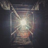 Подземности №2 :: Кенгуру Урбанистический