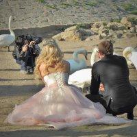 Свадьба :: Юрий Ващенко
