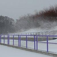 Снежно :: Дмитрий Близнюченко