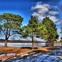 Последний снег :: Андрей Куприянов