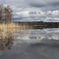 у природы нет плохой погоды :: liudmila drake