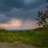 Дождь идет... :: Вячеслав Мишин