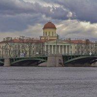 Санкт-Петербург, Пушкинский дом. :: Александр Дроздов