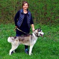 Девушка с собакой :: юрий иванов