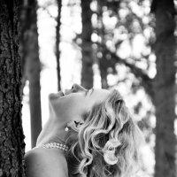 зимний лес :: Олеся Семенова