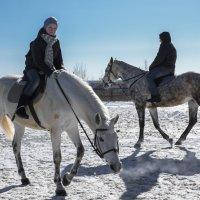 катание на лошадях :: Ирина Корнеева