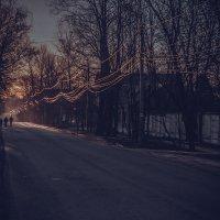 Утро :: Викка Шкунова
