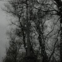 Чернёное серебро Таганрога :: Андрей Решетько