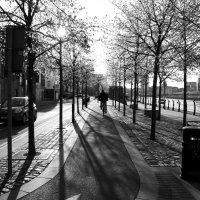 Dublin :: SvetlanaScott .