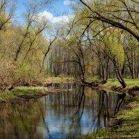 Пейзаж - Красный Берег :: Дарья Дойлидова