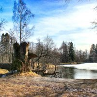 Шуваловский парк :: андрей мазиков