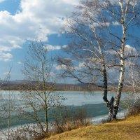 Весны мгновенье. :: Светлана