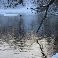 Морозная река :: Dasha Starchikova