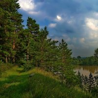 Летом. :: Владимир Михайлович Дадочкин