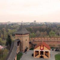 Замок Любарта. :: Rainer Gainer