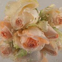 Розовые слезы дождя :: Светлана Григорьева