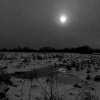У ручья! :: Владимир Шошин