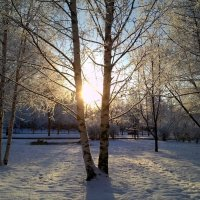 Зима :: Наталья Левина
