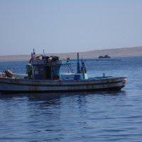 Египет :: Terragor .