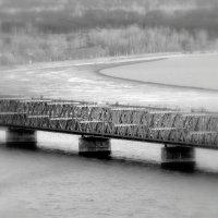 Мост :: Дмитрий Сопыряев