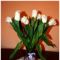 Белые тюльпаны.... :: Ольга Ламзина