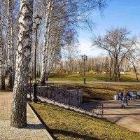 Весна в парке :: Любовь Потеряхина