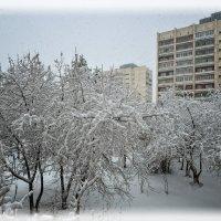 У природы нет плохой погоды... :: Сергей Адигамов