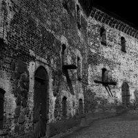Старые стены :: Владимир Шутов