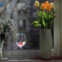 Весеннее окно :: Evgeny