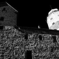 Замок :: Владимир Шутов