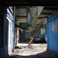 Старый дворик :: Александр Скамо