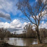 Перемена погоды в апреле :: Александр Никишков