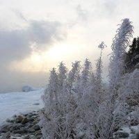 Зима :: Олег Сафонов