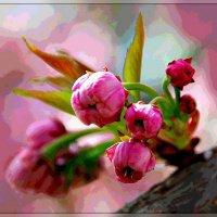 Весна :: Юрий Гординский