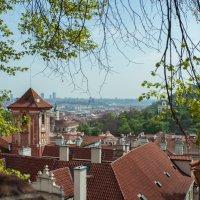 Прага :: Александр Шакиров