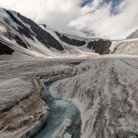 Ледник Большой Актру, Горный Алтай :: Дмитрий Кучеров