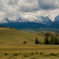 Северо-Чуйский хребет, Курайская степь, Горный Алтай :: Дмитрий Кучеров