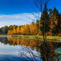 Рассвет на озере :: Елена Решетникова