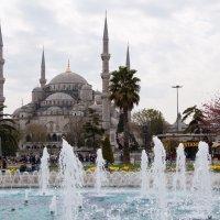 Голубая мечеть :: Павел Катков