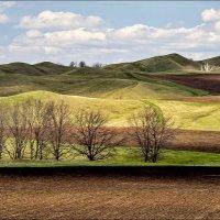 Холмы весной :: Любовь Потеряхина