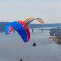 Воздушный перекрёсток... :: Дмитрий Гортинский