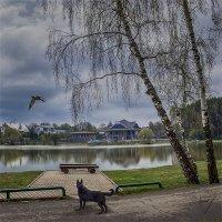 апрель :: Светлана Васильева
