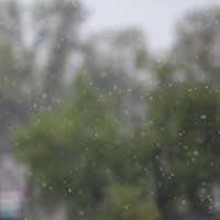 Весенний дождь :: Robert Faithless